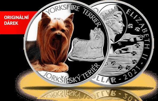 Stříbrná minceJorkširský teriér