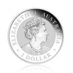 Stříbrná investiční mince Australian Koala 31,1 g - druhá strana