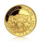 Zlatá investiční mince Africká divočina Somálský slon 31,1 gramu (1 Oz) – první strana